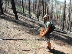 Nick scours the burnt eastern slopes of the Cascades!!