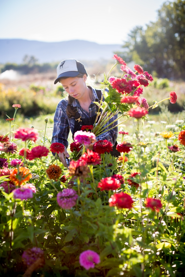 springtimefarm-20