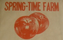 Original Spring-Time Farm bag