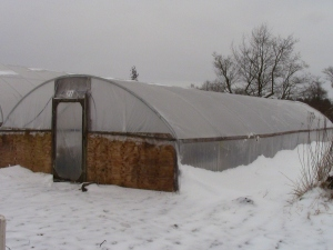 Snowy greenhouse