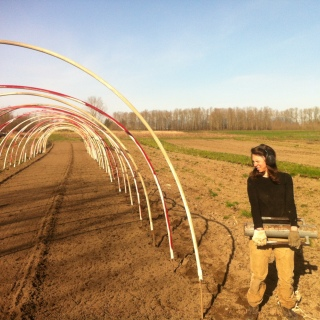 Building the hoop house