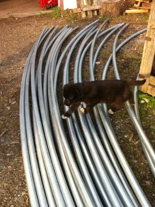 Reba helping bend pipe