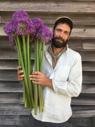 Nick with giant alliums